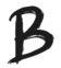 Paddleboarding | Restauranteur | Brad Roark